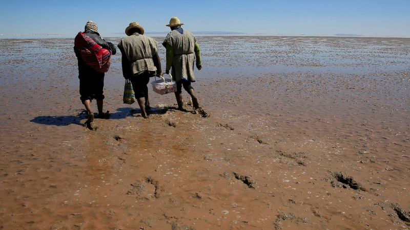 Evaporated lake threatens Bolivia's Uru