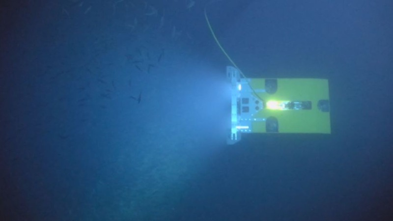 Deep sea robots reveal mineral riches in the abyss