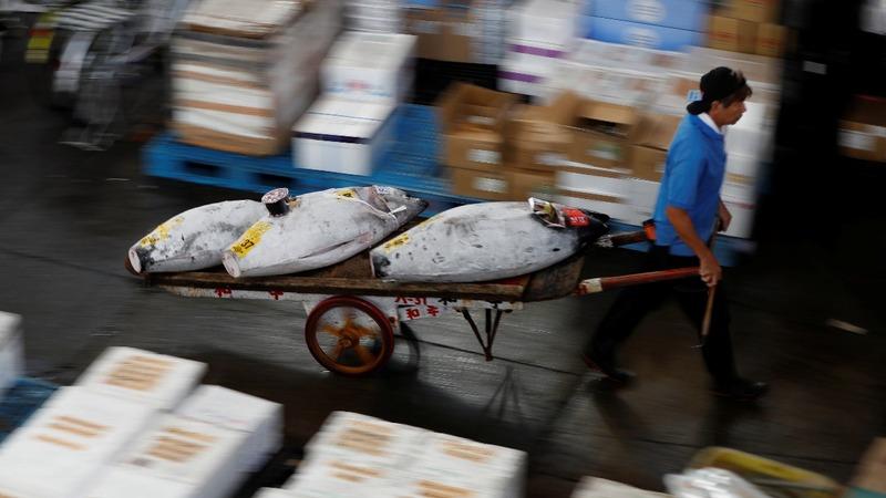 Tokyo's fishmongers fight Tsukiji market closure