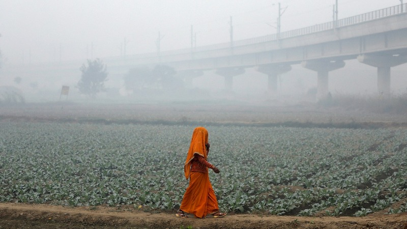 As farmers burn fields, Delhi braces for smog