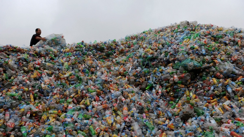 'Single-use' is a 2018 word of the year