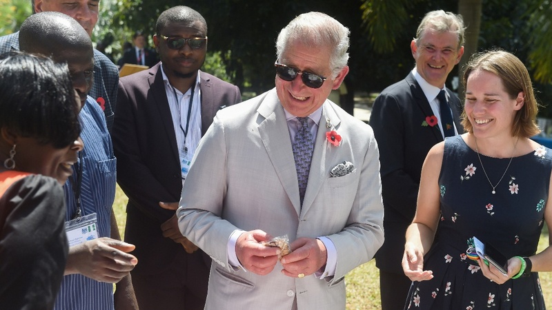 Prince Charles says he won't be a meddling king