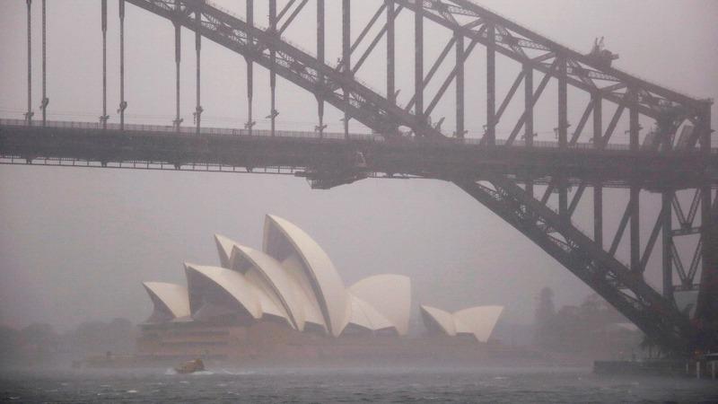 "INSIGHT - ""Once in 100 year"" rain strikes Sydney"