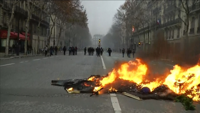 Cars and Christmas trees burn during Paris protests