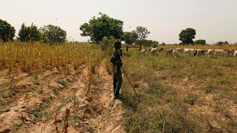 How land is fueling a bloody turf war in Nigeria