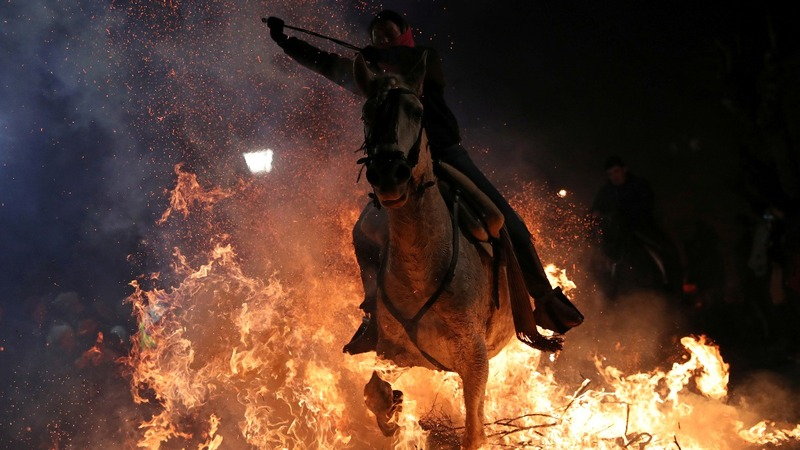 INSIGHT: Horses 'cleansed' with fire in Spain