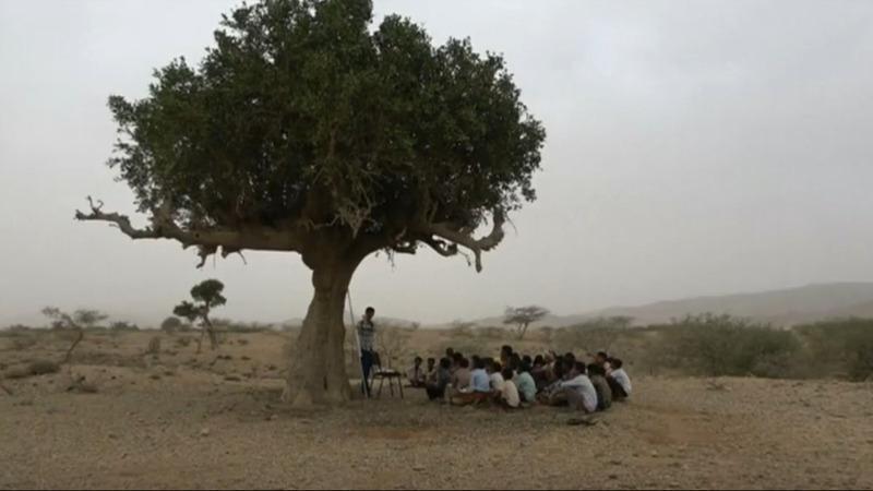 Yemeni students create makeshift outdoor classes