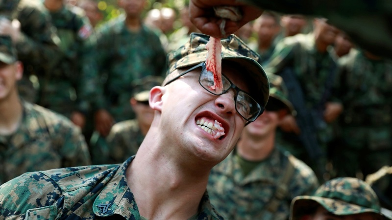 Snake blood is on the menu for U.S., Thai troops