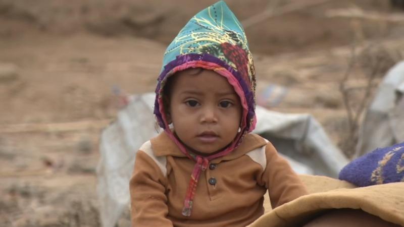 Displaced Yemeni families plea for help