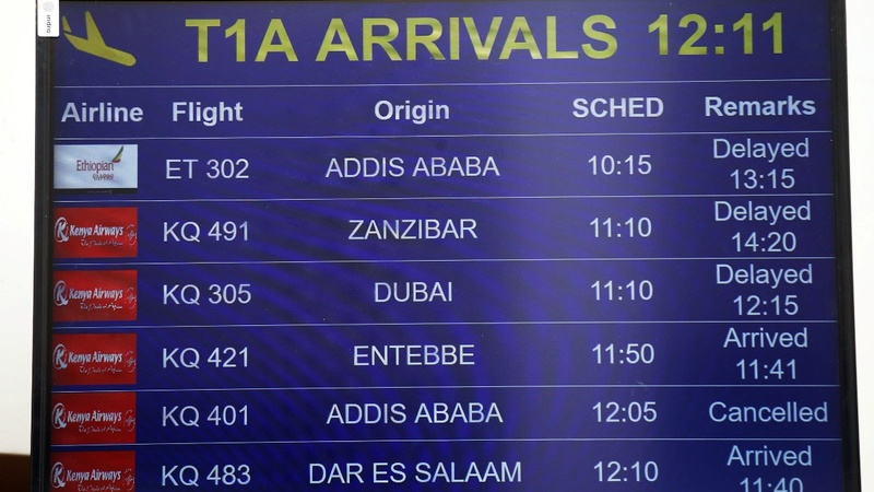Ethiopian Airlines Boeing jet crashes, kills 157