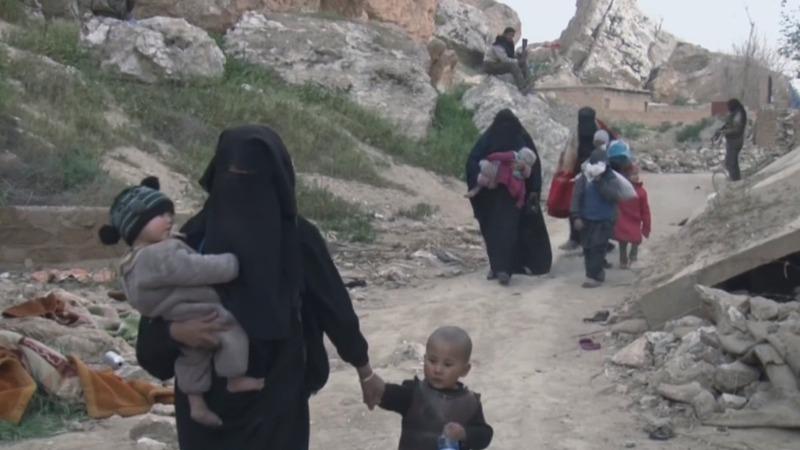 Hundreds surrender in last IS enclave, SDF advance