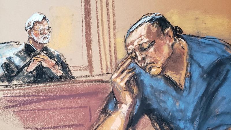 Mail bomb suspect Sayoc pleads guilty