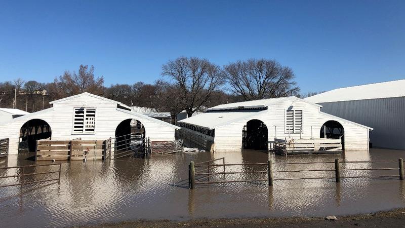 Midwest farmers struggle amid floods, trade war