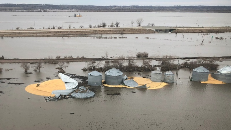 Floods ruin grain in already struggling Midwest