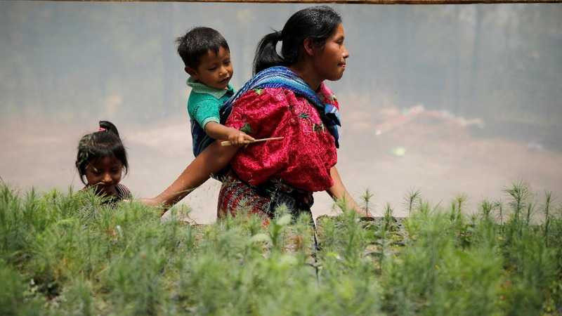 U.S. aid helped Guatemalan farmers from migrating