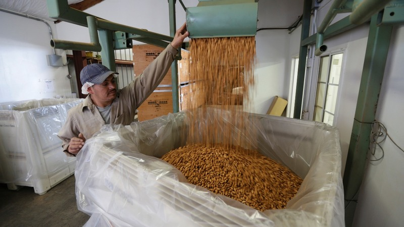 California farmers worried about India almond tariffs