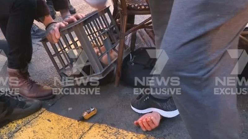 Bystanders restrain offender in Sydney stabbing