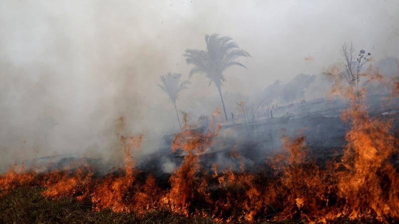 G7 offers Amazon fire aid, amid Bolsonaro row