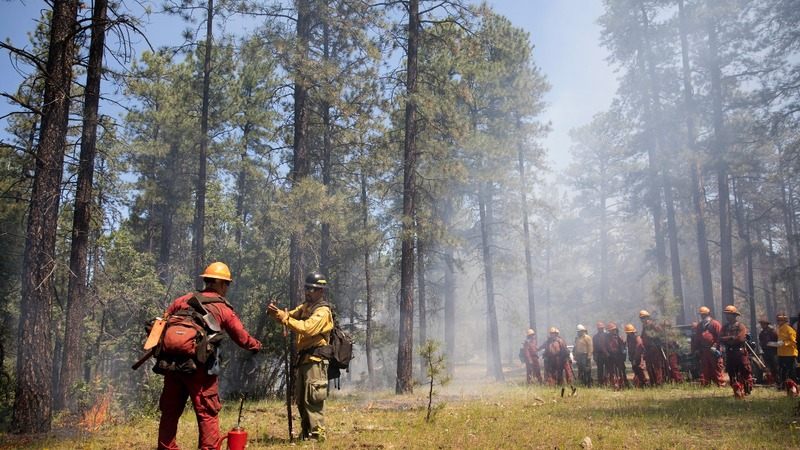 Why wildfire prevention is igniting a new fight
