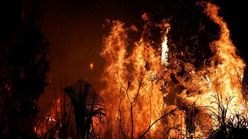 Amazon fires don't dampen Bolsonaro's popularity