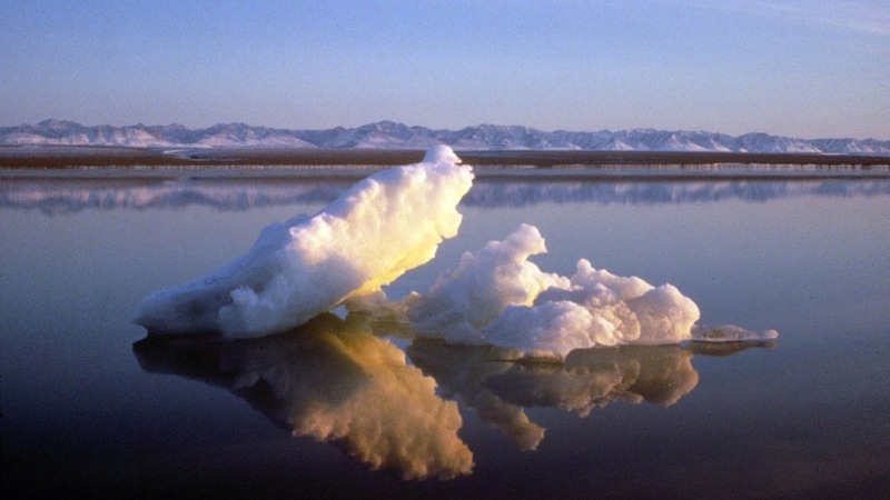 Year-long Arctic climate-change study begins