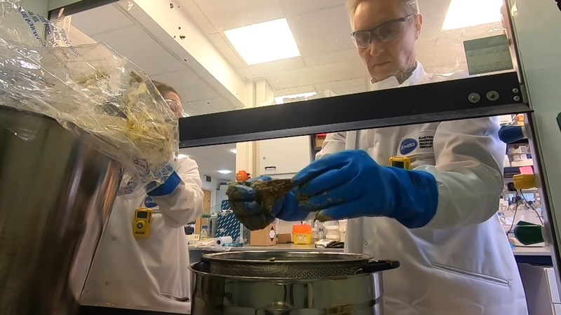 What lies beneath: dissecting a 'fatberg'