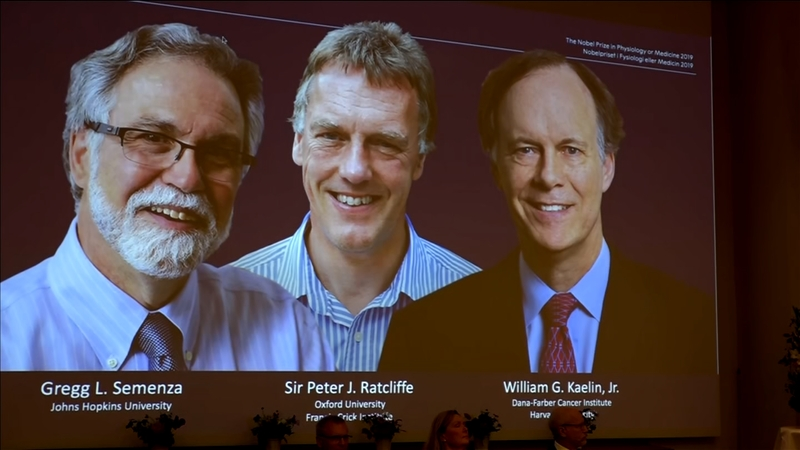 Trio win Nobel Prize for oxygen research