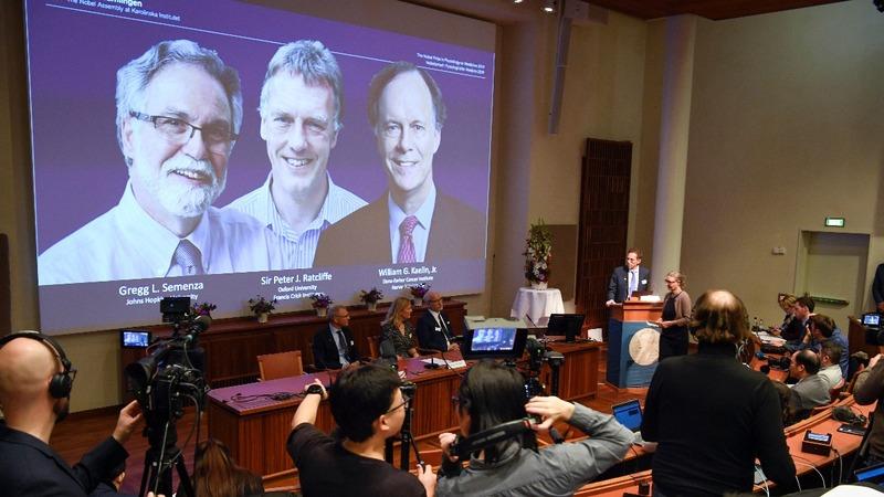 Nobel winners rejoice amid shock and surprise