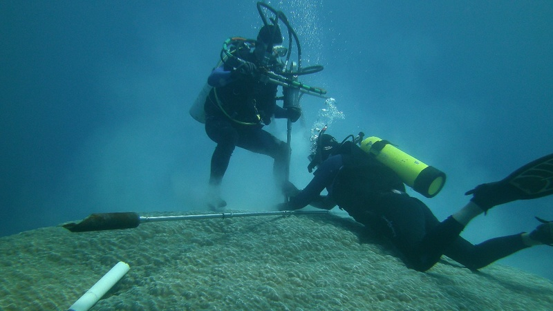 Scientists look to coral for clues on climate
